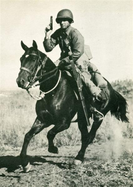 horse-cav-with-45-37.jpg
